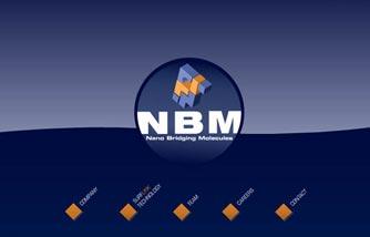 Nano Bridging Molecules SA